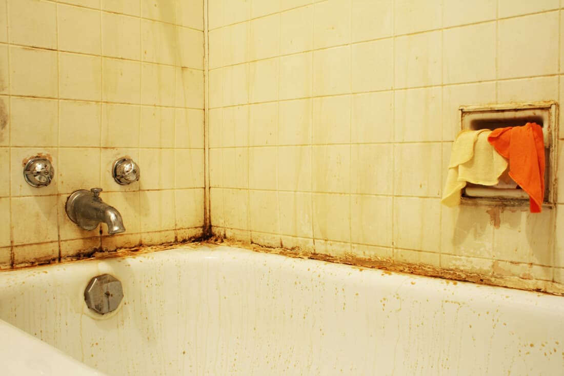 Maintenance kelowna home inspections c4u inspections for How to get mold off of walls in bathroom