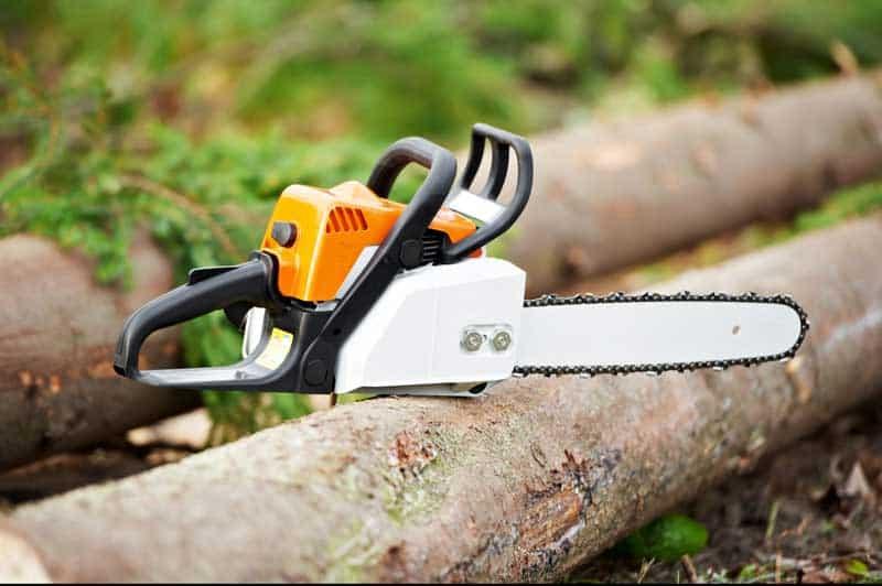 cutting-down-a-tree